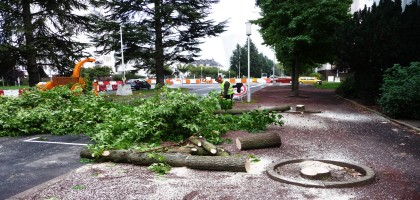Anachronisme aggravé du Tramway Tourangeau