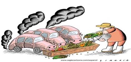 Agrocarburants industriels : pas de nourriture dans nos voitures!
