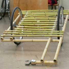 bamboo_inside