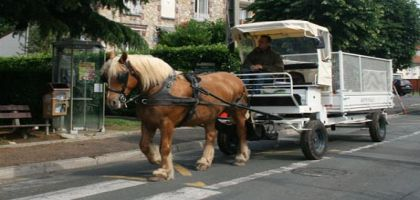collecte-dechets-a-cheval