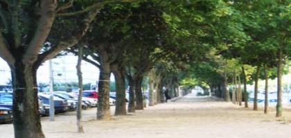 La municipalité de Tours avait-elle déjà budgétisé le massacre du mail ?