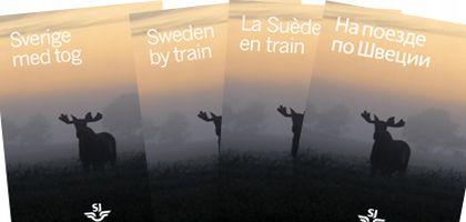 suede-en-train