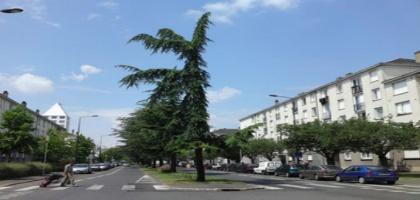 tramway-le-moins-ecologique