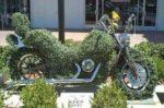 Motocyclisme et écologie