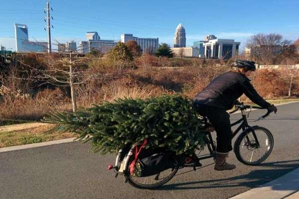pic-of-day-xmas-tree-cargo-bike-600x579