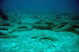 Les récifs artificiels de pneus: un désastre écologique