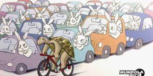 La Voiture et le Vélo