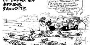 Vive la barbarie sur France Télévision !